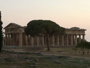 Sulle tracce dell'oro_anteprima docenti @ Parco Archeologico di Paestum   Capaccio   Campania   Italia
