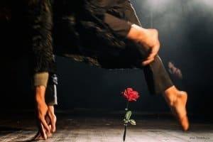 CAPPUCCETTO ROSSO premio EoloAwards2019 @ Teatro Ghirelli | Salerno | Campania | Italia